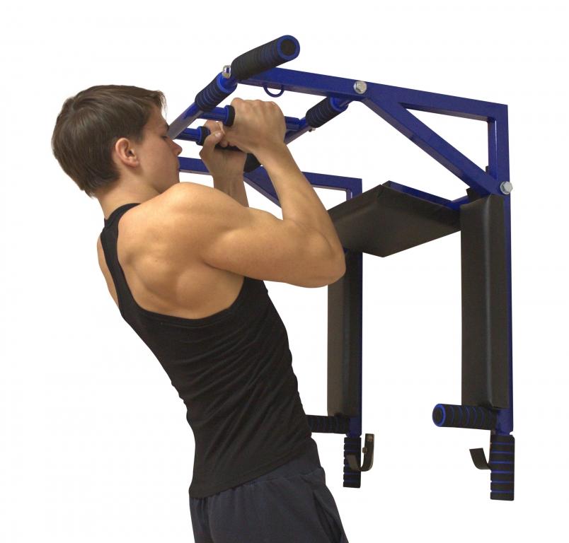 Брусья группа мышц картинка