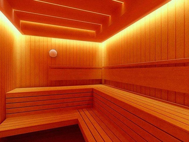 освещение для бани цена